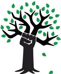 révolution verte paléo québec